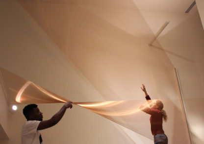 Sophia Dixon Dillo installation art