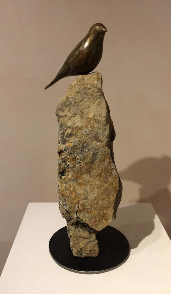 Songbird in Quiet Contemplation
