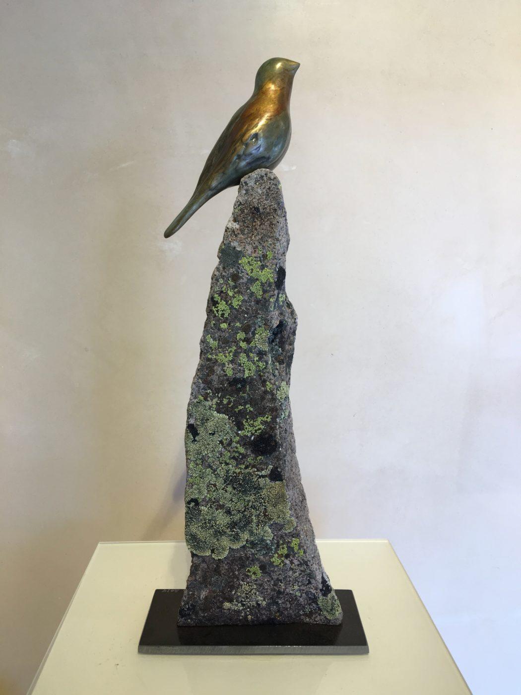 Songbird Hopeful