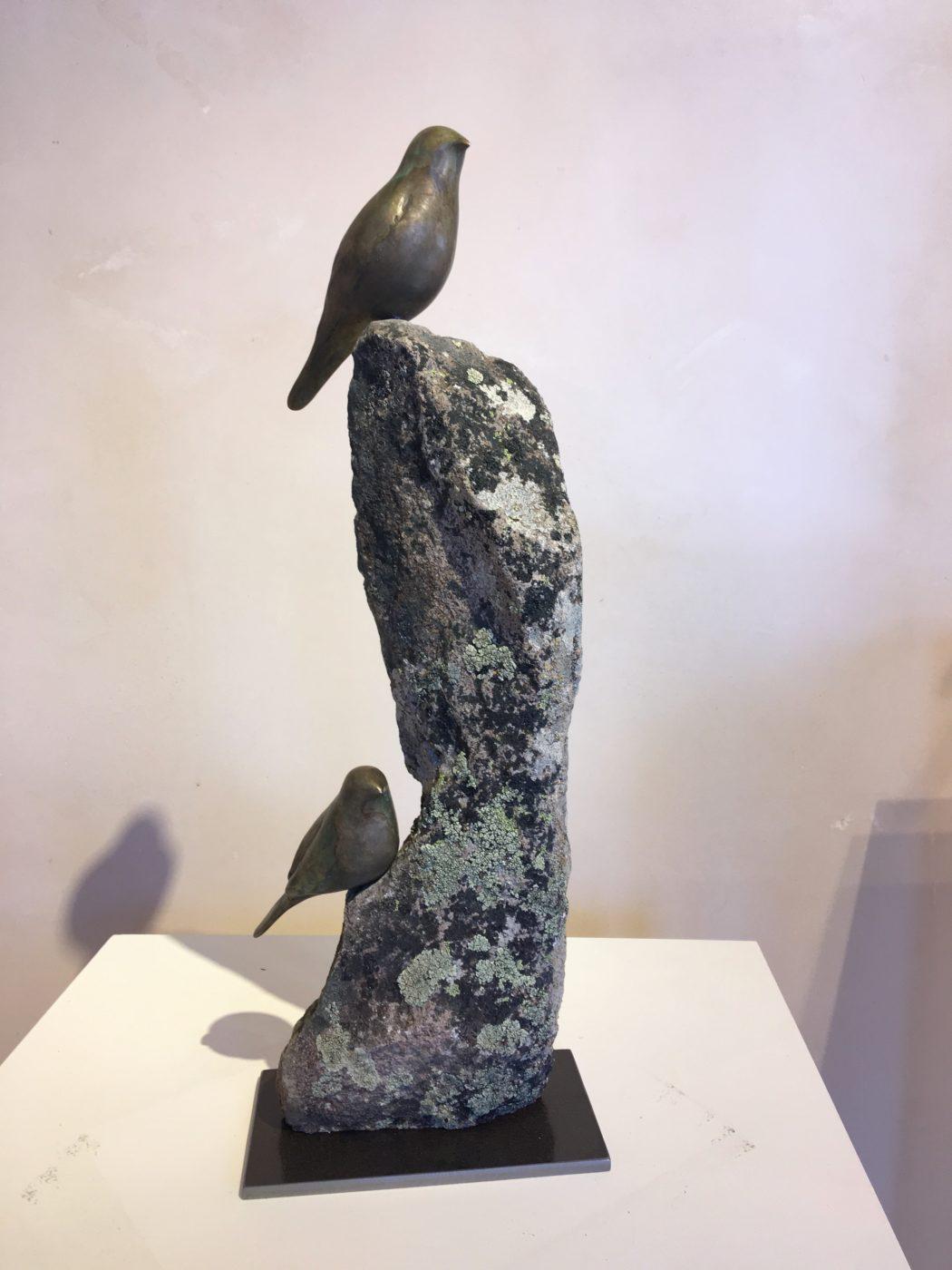 Songbird Peek-A-Boo