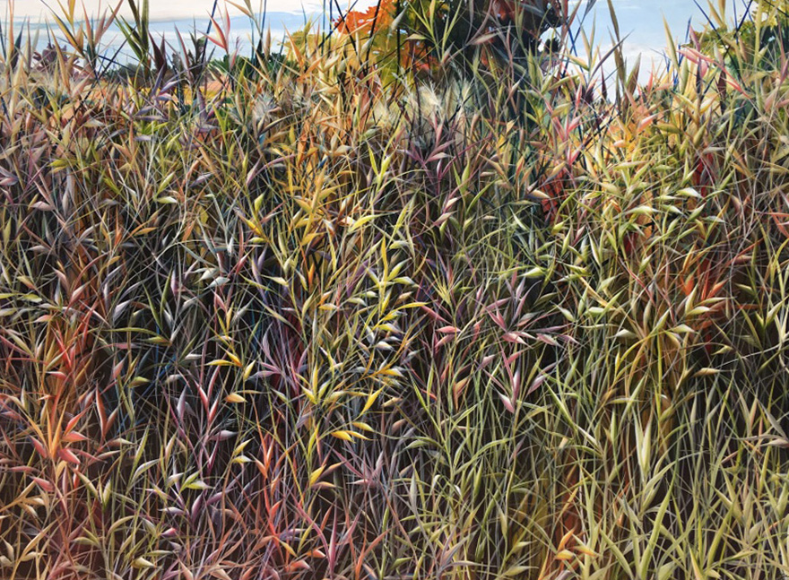 Charlie Burk Grass Paintings